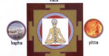 Association Yogayurveda