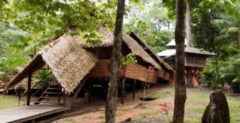 Camp Cariacou - Écotourisme